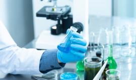 Необходимость в тестировании на COVID-19 сохранится в России до 2024 года