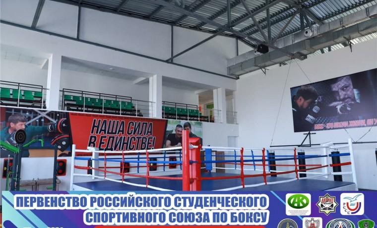 В Шали стартует Первенство российского студенческого спортивного союза по боксу среди юношей